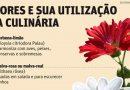 Flores e suas ultilizações na culinária