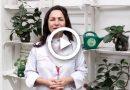 GastroUna 2018 – Apresentação Rosilene Campolina