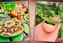 Dia do Ovo, o coringa da gastronomia